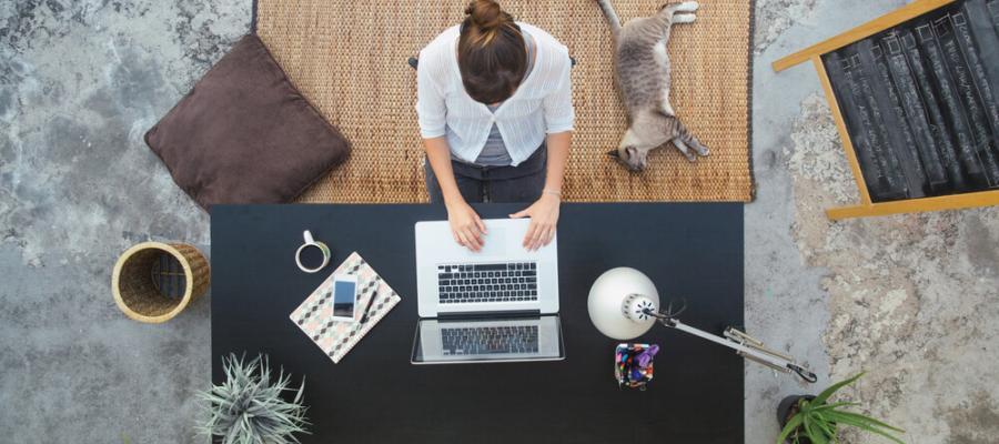 سئو چیست و چرا فروشگاههای آنلاین به آن نیاز دارند؟